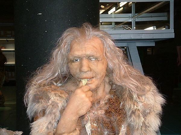 Neanderthal old man