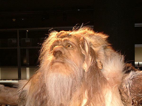 Neanderthal shaman