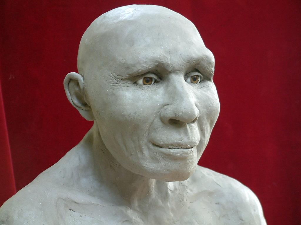 Neanderthal Lady